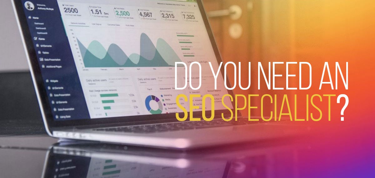 need an seo specialist