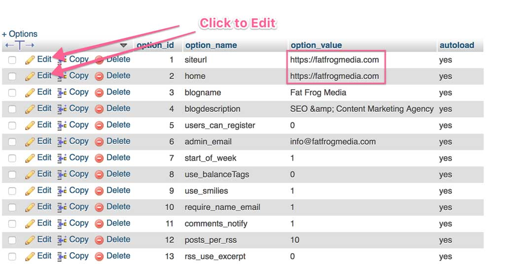editing mysql database for wordpress website.png
