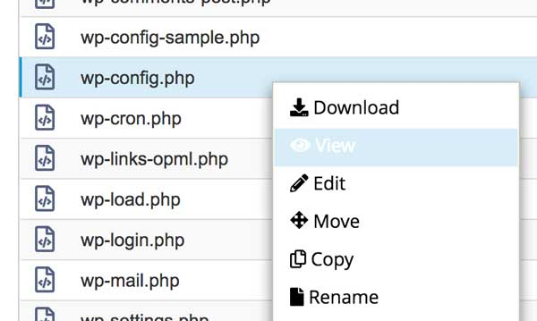 Editing the wpconfig.php file