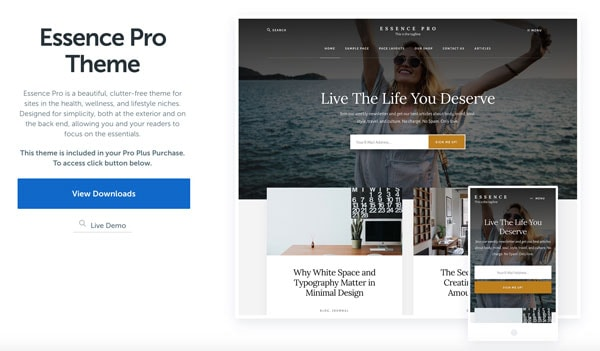 genesis wordpress themes