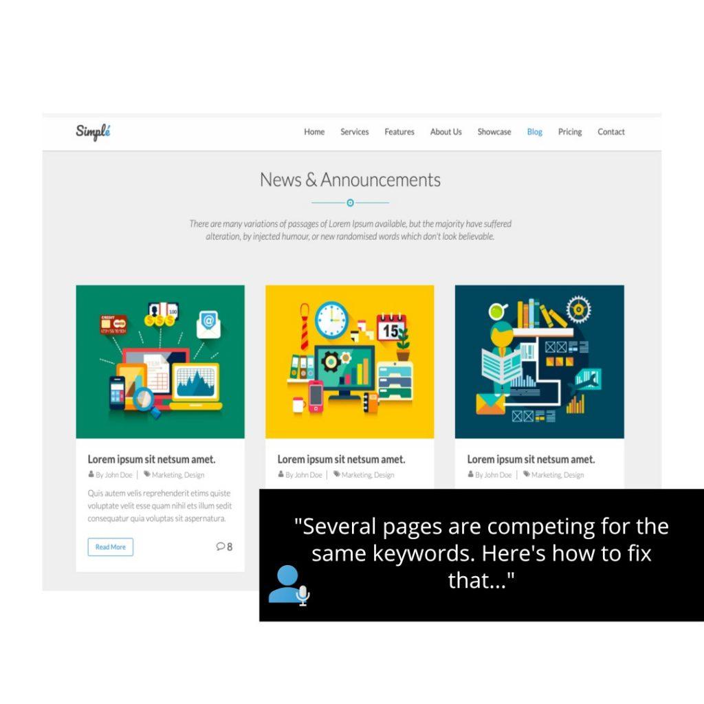 audit website service