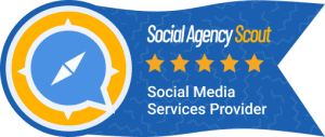 Social Agency Scout Review Badge