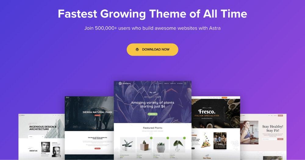 Astra WordPress Theme For Travel Blogs