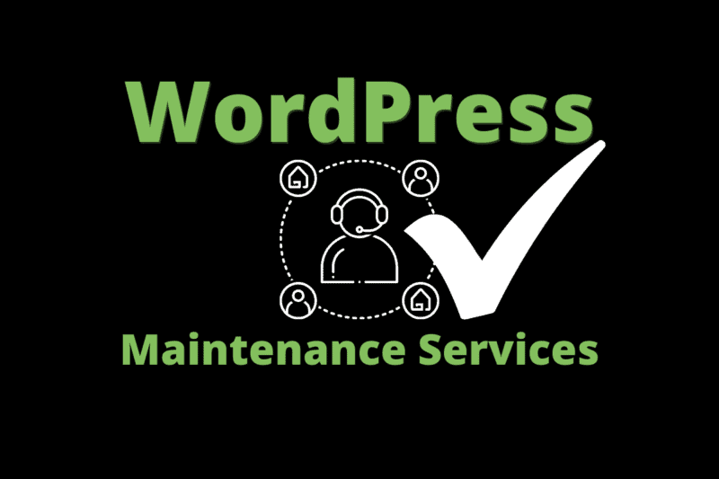 the best wordpress support packages
